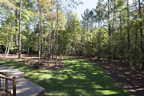 wooded backyard traditional landscape raleigh