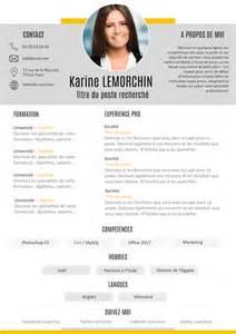Le Cv Exemple by Exemple De Cv Le Bon Cv Gratuit 224 T 233 L 233 Charger