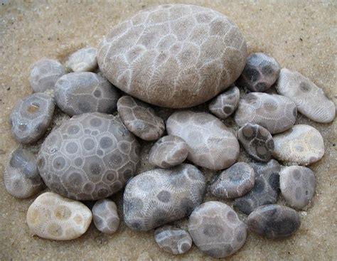 petoskey stones michigan