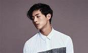 All About Ji Soo (Actor): Profile, Girlfriend, Dramas ...
