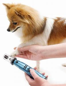 top 10 best electric pet nail grinders reviewed 2017