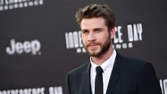 Liam Hemsworth: 9 Things You Need to Know About the ...