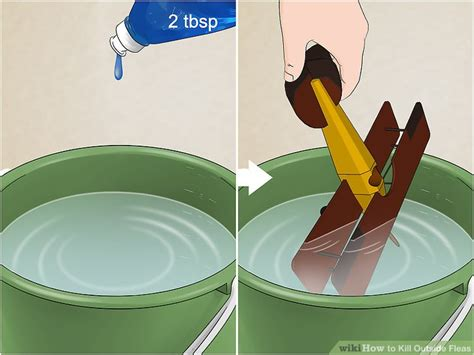kill  fleas  steps  pictures wikihow