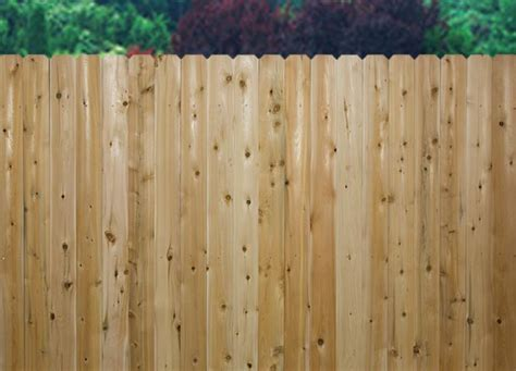 A Guide To Different Types Of Wood For Fencing
