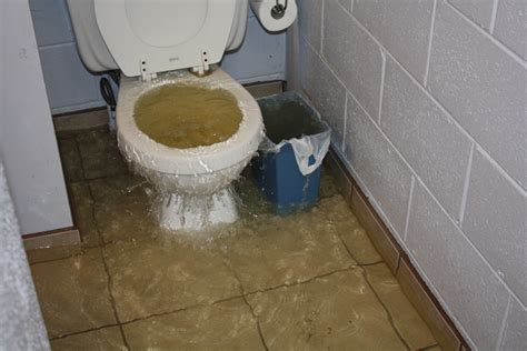 toilet flooding 28 images toronto flooded toilet voice
