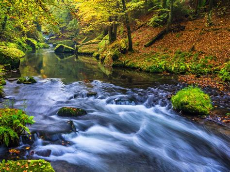 beautiful nature forest river wallpapers hd high