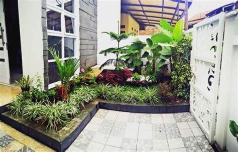 kreasi taman minimalis beserta tanaman hias  cocok