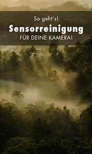 Kamera Reinigen Lassen : sensorreinigung f r die kamera alles was du wissen musst photo pinterest fotografie ~ Yasmunasinghe.com Haus und Dekorationen