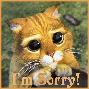 I'm Sorry  Sorry Myniceprofilecom