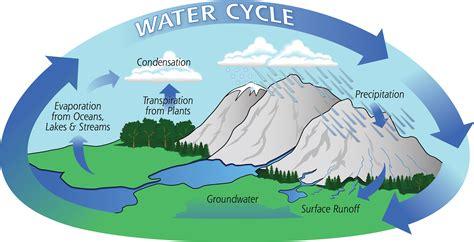 water cycle precipitation education