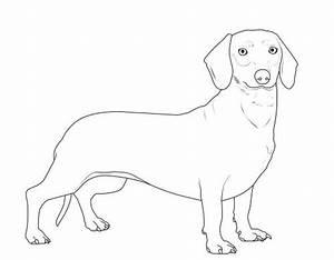 kostenlose malvorlage hunde dachshund zum ausmalen
