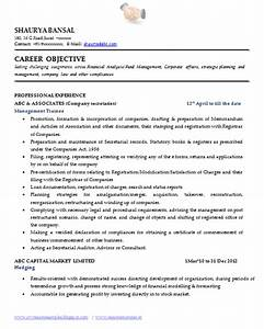 sample template of an excellent company secretary resume With companies that do professional resumes