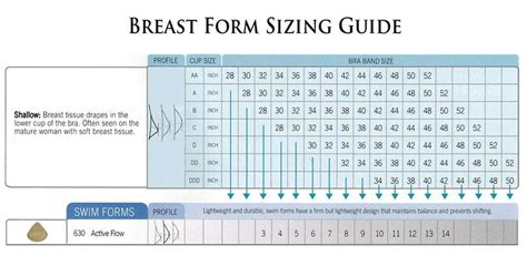 amoena breast forms size chart damozelle breast forms prosthesis size charts