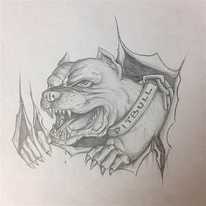 Pitbull sketch for our next project on a harley tank. @bik ...
