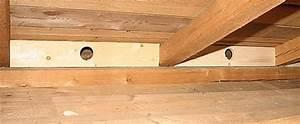Dämmung Mit Holzfaserplatten : w rmed mmung mit zellulose einblasdaemmung energie sparen ~ Lizthompson.info Haus und Dekorationen