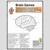 Human Body Systems For Kids Worksheets | 225 x 300 jpeg 16kB