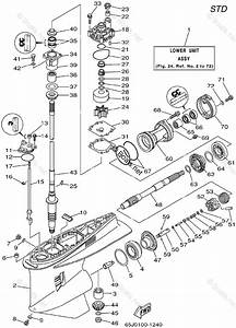 Yamaha Outboard Parts By Year 2002 Oem Parts Diagram For Lower Casing Drive 1 225 250