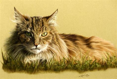 tierzeichnungen und tierportraits von katja sauer