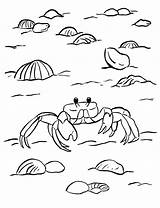 Crab Coloring Ghost Pages Printable Print Sea Horseshoe Week Samanthasbell Starts Getcolorings Reference sketch template