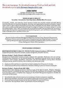 Business Analyst Resume Examples Objectives You have to ...