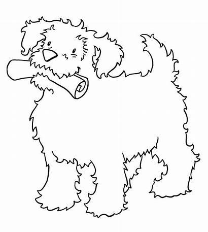 Coloring Puppies Printable Dog Boyama Haber Kolorowanki