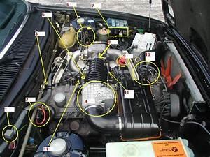 Bmw M52tu Engine Diagram Bmw M52 Engine Diagram Wiring