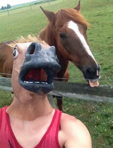Funny Horse Mask Pictures