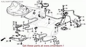 Honda Civic Ecu Wiring