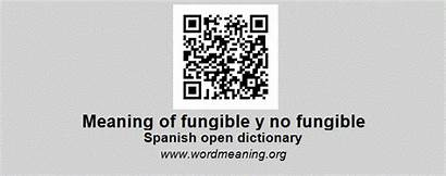 Fungible Spanish Dictionary Meaning Definition Words Start