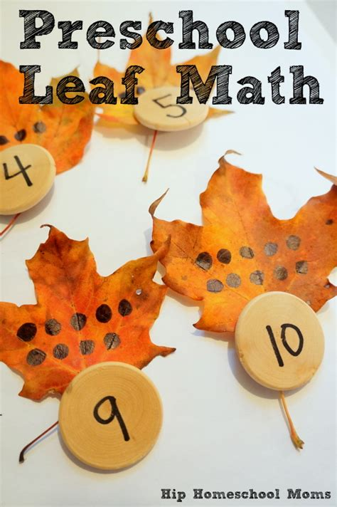 preschool leaf math hip homeschool 322 | DSC03905 001