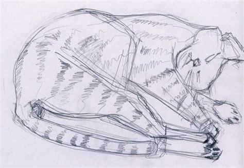 design     menggambar kucing
