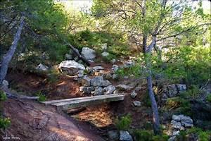 Petit Pont En Bois : photo petit pont de bois ~ Melissatoandfro.com Idées de Décoration