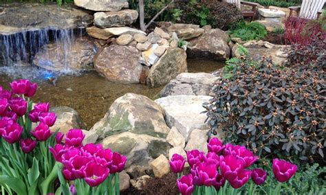 indiana flower patio show in indianapolis in groupon