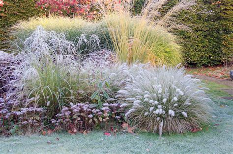 Garten Pflanzen Jahreszeit by Pflanzplanung H C Eckhardt Gmbh Co Kg