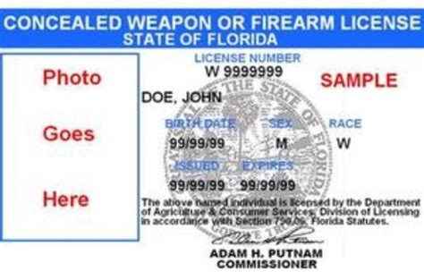 law  florida voters  show concealed weapons