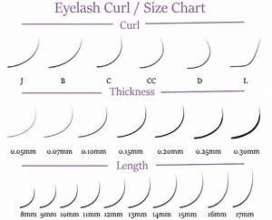 Fake Eyelash Size Chart Curl Individual Camellia Dlux Professional Lashes