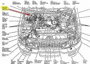 1998 Expedition Engine Diagram : 1998 ford expedition engine diagram automotive parts ~ A.2002-acura-tl-radio.info Haus und Dekorationen