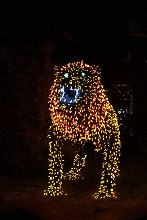 zoo lights phoenix christmas