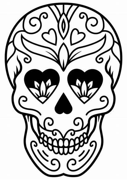 Skull Coloring Sugar Sheets Mindfulness Skulls Colouring