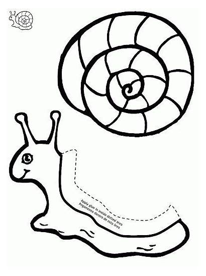 Snail Templates Craft Caracol Paper Crafts Template