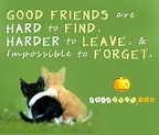 Best Friend Quotes That Will Make Them Cry. QuotesGram