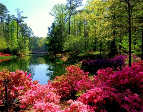 usa gardens the most beautiful gardens in america blooming mansions home and gardening
