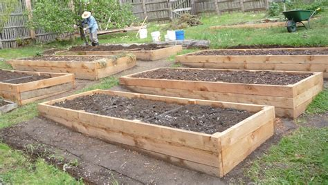 Raised Beds Soil Depth Requirements  Eartheasy Guides
