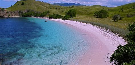 playas de arena rosa  las vacaciones buena vibra