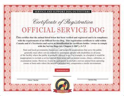 pin  lloyd elam  lloyd service dogs service dog