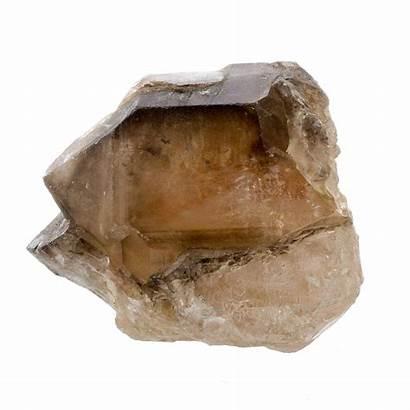 Quartz Smokey Ammonite Stone Abc Abcworldwidestone Grey