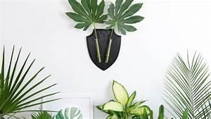 Zimmerpflanzen Für Kinderzimmer : 6 perfekte zimmerpflanzen f r anf nger und was muss man tun um sie nicht zu t ten ~ Orissabook.com Haus und Dekorationen