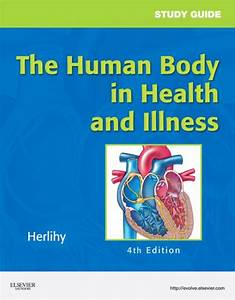 Study Guide For The Human Body In Health And Illness  Ebook