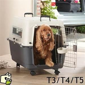 Voiture Pour Chien : cage transport andes chien avion voiture ~ Medecine-chirurgie-esthetiques.com Avis de Voitures