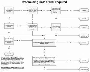 School Bus Diagram For Cdl